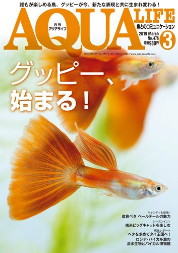 2019 アクアライフ グッピー特集 表紙.jpg